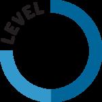 levelC1